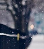 【Win7主题包下载Snow - 雪中的栅栏剪影